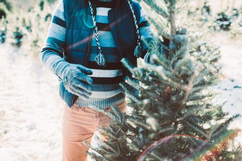The Best Christmas Markets, Christmas Tree Farms